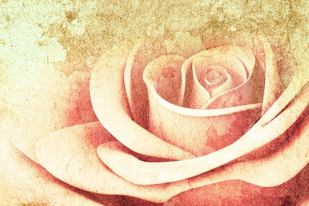 3D Rose colors on texture background photo