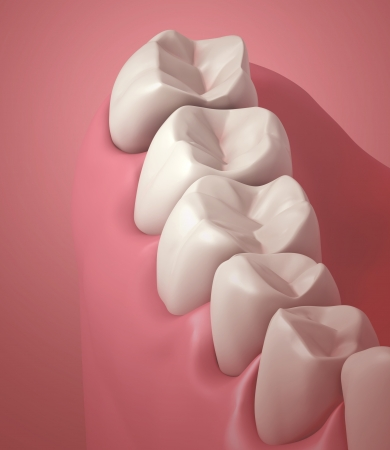 3D teeth or tooth close up illustration illustration