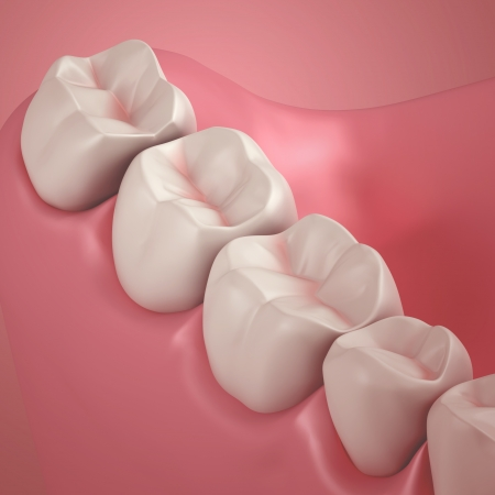 chew: 3D teeth or tooth close up illustration Stock Photo