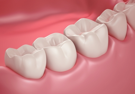 dentin: 3D teeth or tooth close up illustration Stock Photo