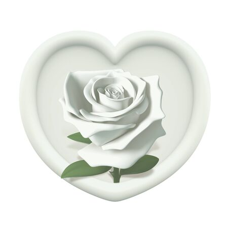3D heart frame and white rose  isolated photo