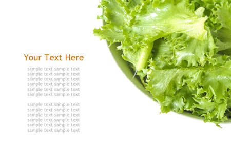Filey Iceberg lettuce fresh in white bowl photo