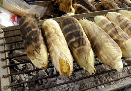 corn kernel: grilled corns  Stock Photo