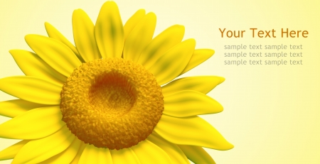 dazzling: background of sunflower model 3d, isolated