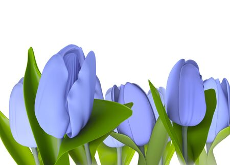 bulb tulip: blue tulip flower model 3d isolated  illustration on a white background  Stock Photo