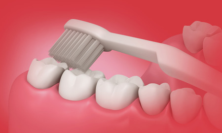 scuff: 3D Toothbrush cleaning teeth in mouth