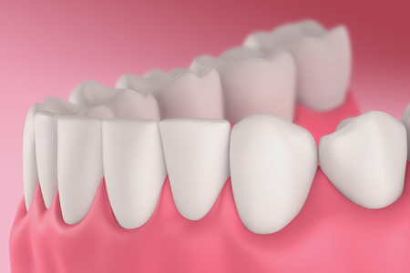 dentin: 3D teeth or tooth side view, closeup illustration Stock Photo