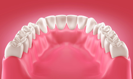 tooth pain: 3D teeth or tooth illustration, back view