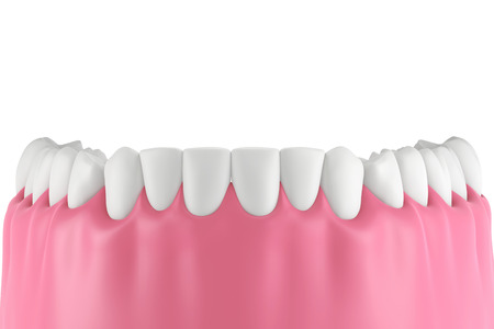 dentin: 3D teeth or tooth illustration,front view isolated