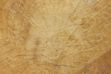 texture wood used for background Stock Photo - 12728438