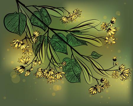 lindeboom: Linde