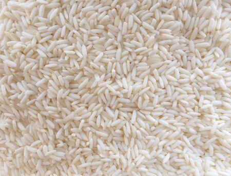 white: Rice seed white Stock Photo