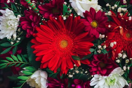 a bouquet of flowers in red colors. gerbera, chrysanthemum, eustoma, gypsophila. Close view