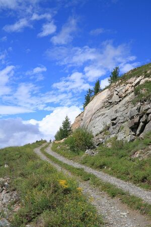altay: Tourists at excursion. An old Chuysky path in the Altay mountains. Siberia, Russia