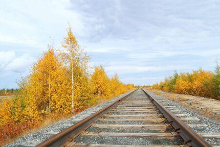 rail cross: Track in the autumn. Siberia, Russia Editorial