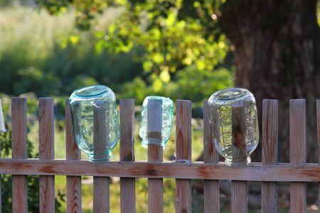 capacities: Three capacities dry on a fence Stock Photo