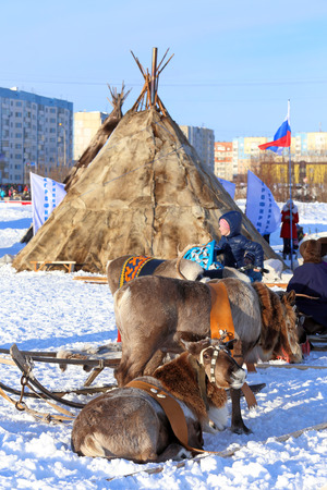 breeders: NADYM, RUSSIA - MARCH 14, 2015: deer and dwellings of Nenets in the city during a traditional holiday Day of reindeer breeders. Nenets - aboriginals of the Russian North