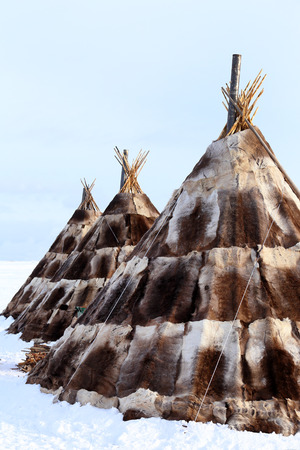 breeders: Traditional dwelling of aboriginals of the North of Siberia, reindeer breeders of Nenets