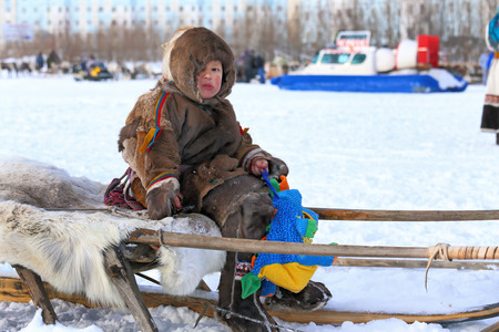 breeder: NADYM, RUSSIA - MARCH 14, 2015: tThe boy the Nenets sits on sledge a traditional holiday Day of the reindeer breeder. Nenets - aboriginals of the Russian North