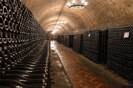 grunge bottle: Bottles with wine are stored in the cellar