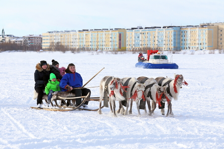 eskimo woman: NADYM, RUSSIA - MARCH 14, 2015: the Nenets woman operates a cervine team during a traditional holiday Day of reindeer breeders. Nenets - aboriginals of the Russian North
