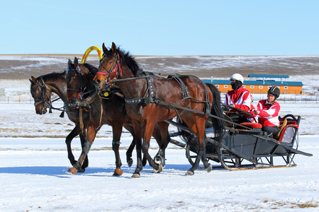 belokurikha: BELOKURIKHA, RUSSIA - MARCH 12, 2016: The Russian three of horses during the holiday Farewell to winter