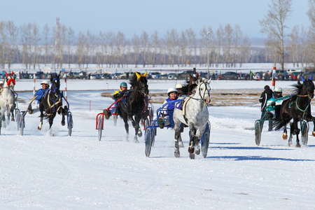 blinders: BELOKURIKHA, RUSSIA - MARCH 12, 2016: Arrivals on horses were open for the audience with free access within the traditional Russian holiday Farewell to winter http:siberianmas.ruabout