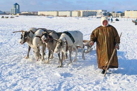 NADYM, RUSSIA - MARCH 04, 2017: Woman Nenets reindeer herder in national dress on a traditional holiday Day of the reindeer breeder. Nenets - aboriginals of the Russian North
