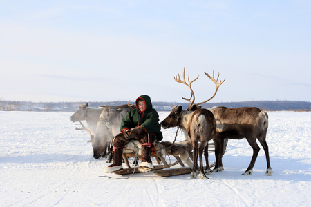 NADYM, RUSSIA-MARCH 07, 2010: young Nenets sitting on sleds. Nenets - aboriginals of the Russian North