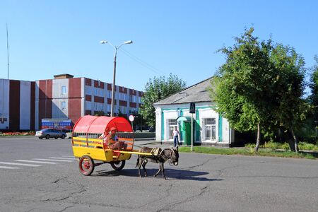 Kamen-na-Obi, Russia-AUGUST 14, 2011: Children ride in a donkey cart on a city street in the Altai territory Reklamní fotografie