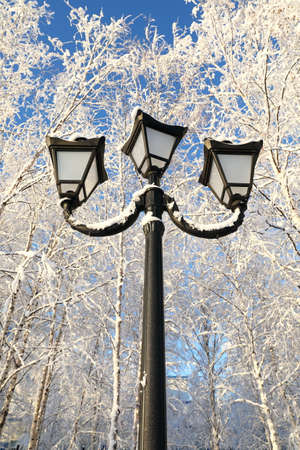 Street lamp against the blue sky and birch branches in winter Stock Photo