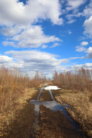 Field road on a spring day in the north of Siberia Reklamní fotografie