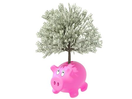 Gorgeous pink piggy bank, isolated on white background