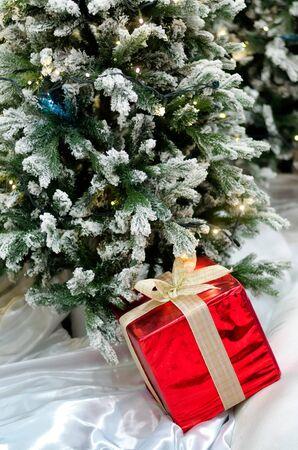 gift box under christmas tree Stock Photo