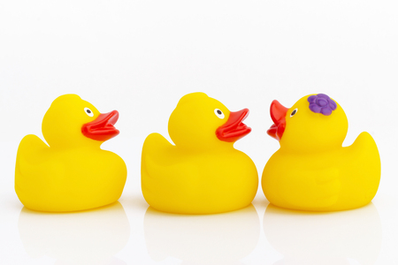 Yellow rubber duck isolated on white background Фото со стока