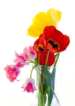 mixed flower bouquet: Tulips