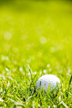 Golf ball on the green grass  photo