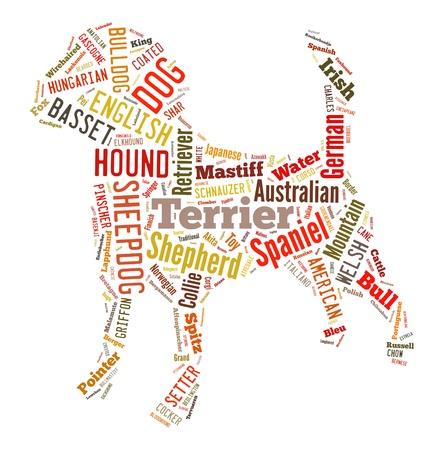 Background concept wordcloud illustration different types name of dog illustration