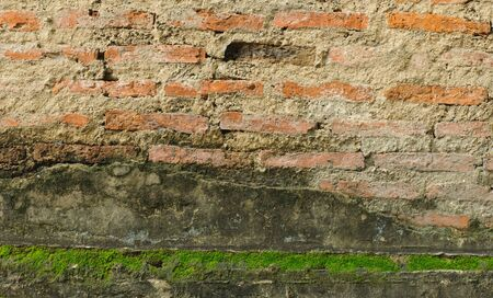 Old red brick wall with moss green background photo