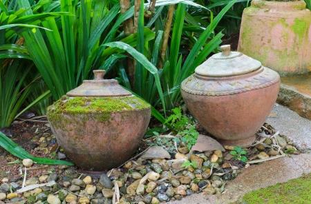 Two Old earthenware in garden