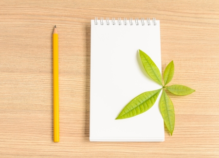 Notebook and wooden pencil and green leaf on wooden background photo