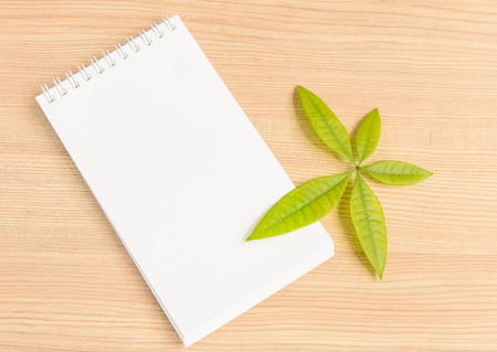 Blank notebook and green leaf on wooden background photo