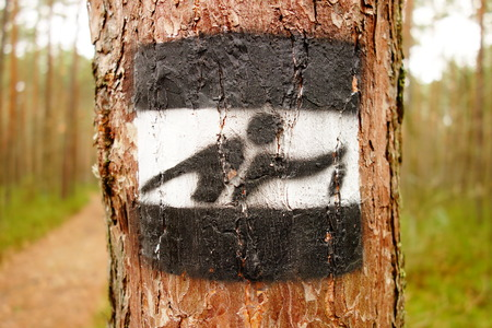Direction mark on a tree