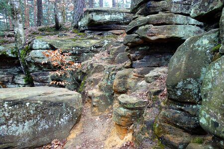 scarp: Beautiful sandstones in a forest Stock Photo