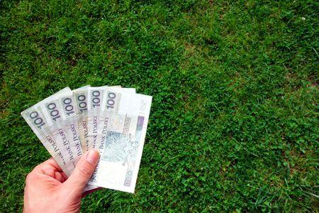 polish: Polish bankrolls Stock Photo