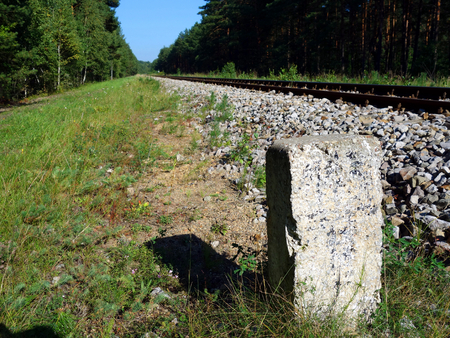 forest railroad: Concrete post by railroad in a forest