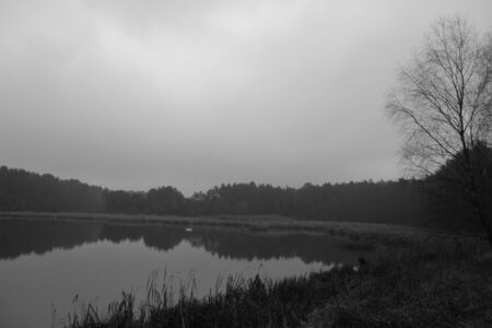 somber: Somber lake landscape, black and white photo