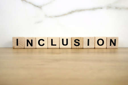 Word inclusion from wooden blocks, diversity concept 免版税图像