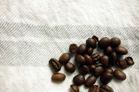 Coffee beans on bright background, closeup view