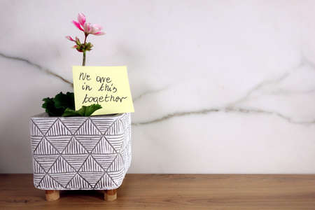 We are in this together note handwritten on sticky note with blossoming flower, help and support during   pandemic concept 免版税图像